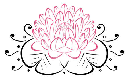 filigree: Filigree Lotus flower, floral rose. Illustration