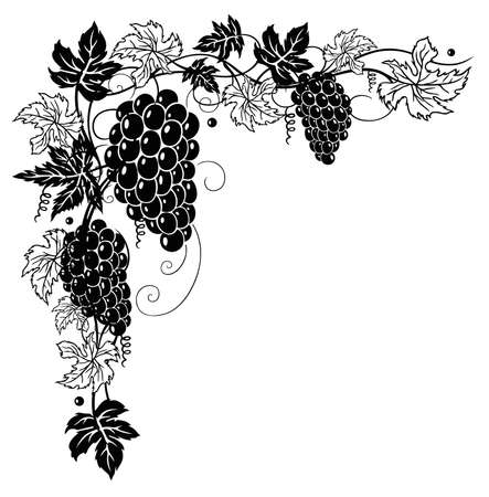 lithe: Filigree leaves with grapes, decoration.