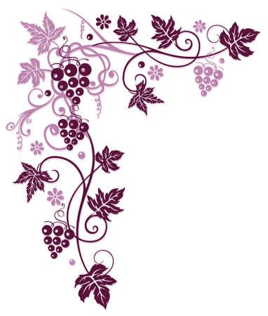 VID: Parra con uvas y hojas de vid en Burdeos