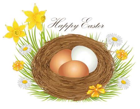 Nest mit Ostereiern und Frühlingsblumen