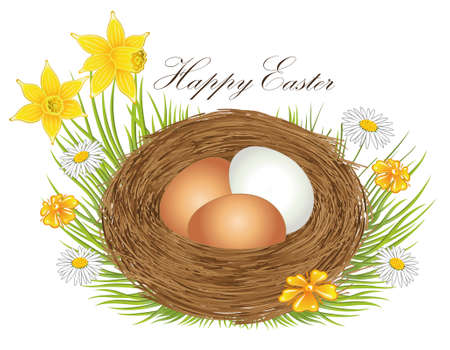 springtime: Nest with easter eggs and springtime flowers Illustration