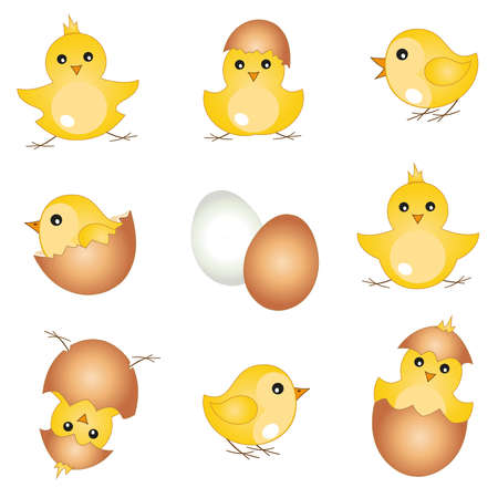 Vector set with beautiful easter chicks, easter design elements