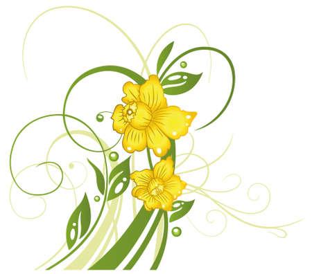 Bunte Frühlings- und Osterblumen, Narzissen
