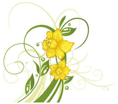 Colorful springtime and easter flowers, daffodils Illustration