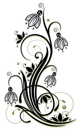 Frühlingsblumen, Schneeglöckchen mit Strudeln
