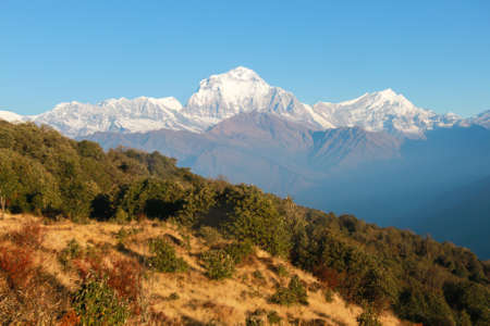 View of the snow-capped Himalayas in Nepal at dawn