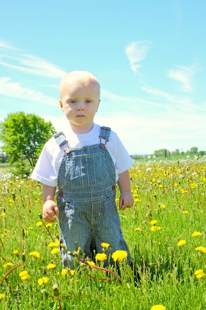 A serious baby boy standing in a field of dandelions, wearing striped bibs. photo