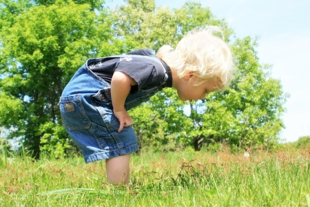 to crouch: A little blonde toddler boy, looking down at something in the grass on a sunny day. Stock Photo