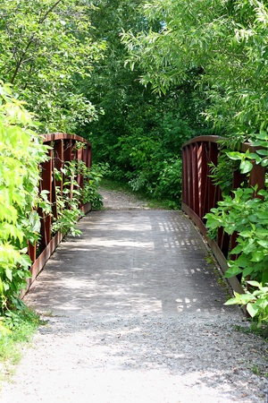 bike trail: a little old iron railed bridge is overgrown with green plants and vines on a stone path in the woods
