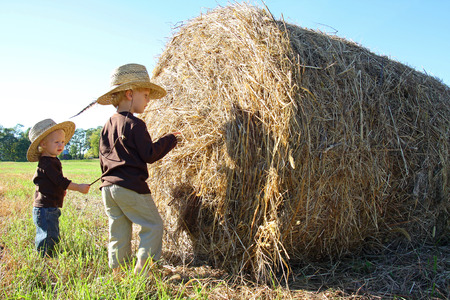Two small kids, a little boy and his baby brother, are wearing straw cowboy hats and inspecting hay bales in a field on a sunny autumn day photo