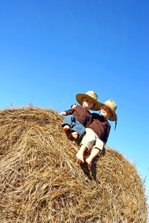 Two happy young children, a boy and his baby brother, are sitting on a hay bale in a field on a farm, wearing straw cowboy hats  room for text, copy space  photo