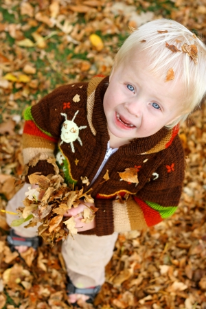 1 year old: a cute, happy young child in a brown sweater is playing outside on an autumn day in a pile of leaves, holding them in his hands and looking up at the camera