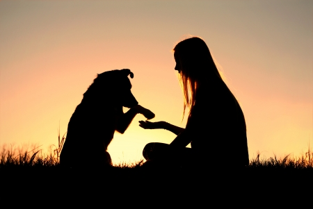 a girl is sitting outside in the grass, shaking hands with her German Shepherd dog, silhouetted against the sunsetting sky
