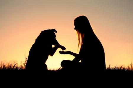 een meisje zit buiten in het gras, handen schudden met haar Duitse herder, afgetekend tegen de sunsetting hemel Stockfoto