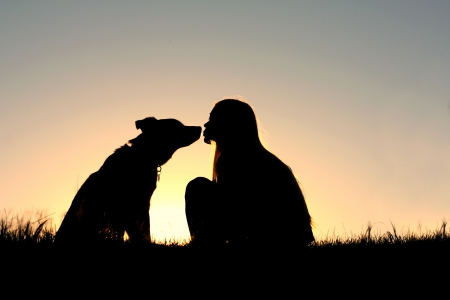 a silhouette of a woman with long blonde is sitting outside in the grass, kissing her large German Shepherd Mix dog at sunset