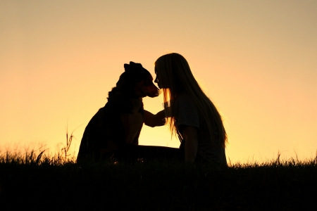 a special and serene moment as a girl is lovingly hugging her German Shepherd Dog, silhouetted against the sunsetting sky