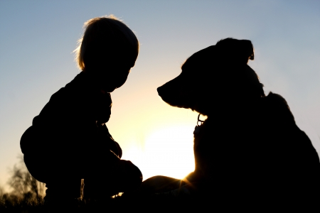 the silhouette of a young child playing outside at sunset with his large German Shepherd dog, giving him a toy ball