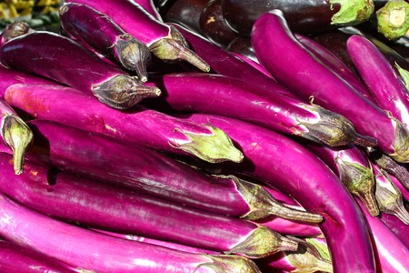 a pile of bright purple Asian Eggplants for sale at a Farmer's Market photo