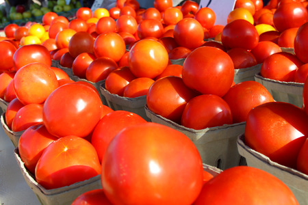baskets of large tomatoes at a sunny outdoor farmer's market photo