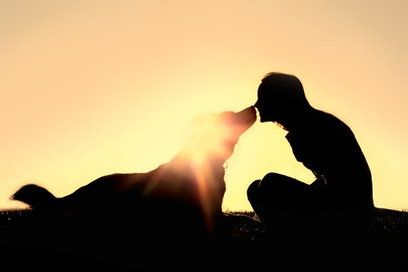 a silhouette of a happy young woman is sitting outside at sunset lovingly kissing her large German Shepherd mix breed dog.