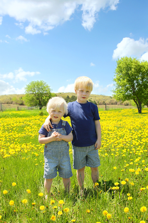 a portrait of two little children, a small boy and his baby brother, who are standing in a meadow of bright yellow dandelion flowers, on a sunny spring day  photo