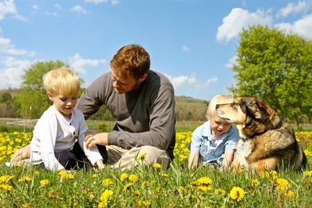 A happy young father is sitting in a Dandelion flower meadow with his two children and their German Shepherd dog, relaxing. photo