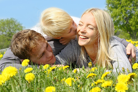 A happy family of three people, mother, father, and young child are laying outside in a meadow of dandelion flowers on a spring day   The little boy is kissing his mom  photo