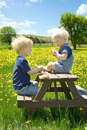 Two young children, a little boy and his baby brother are sitting outside in a flower meadow on a picnic table, eating fruit  photo
