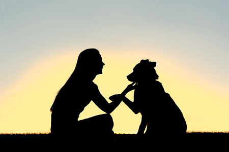 A silhouette of a girl sitting outside, training and playing with her German Shepherd dog, as he shakes her hand isolated in front of a sunset in the sky