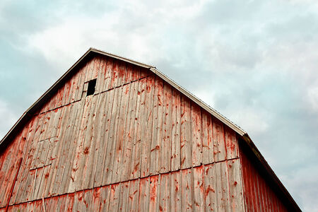 barnwood: The towering peak of the roof of an historic old German style Bank Barn.