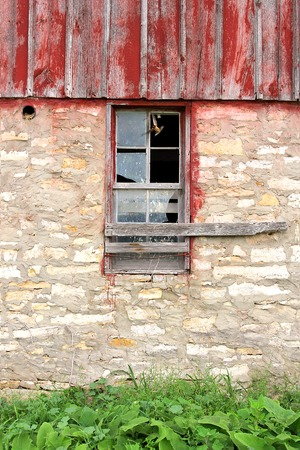 barnwood: A Barn Swallow bird is flying out the window of an abandoned old farm building