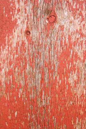 barnwood: Un fondo de la vieja barnwood rojo con la pintura descascarada en el exterior de un granero