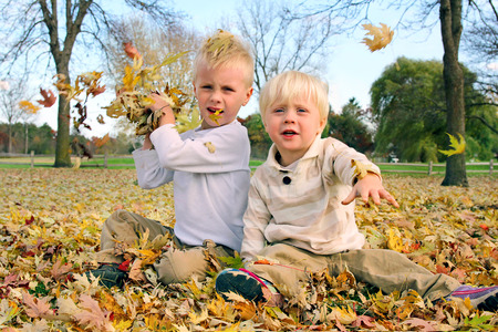 two year old: Two little boys are playing outside on an autumn day, throwing coloful maple leaves.