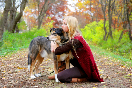 adopt: A young woman and her German Shepherd dog have stopped on a walking trail in the woods to look at something and relax on an autumn day.