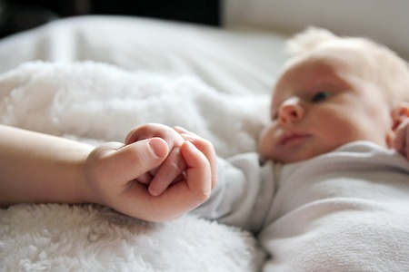 Close up focus on the hands of a newborn baby girl and her toddler brother lovingly holding hands,  with infant in the background. Stockfoto