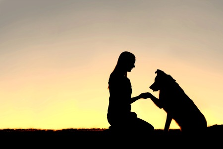 pastor de ovejas: Una silueta de una mujer joven y su mascota perro de pastor alemán Mix dar la mano al atardecer. Con copia espacio en el cielo.