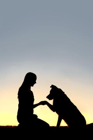 A silhouette of a young woman and her pet German Shepherd Mix Dog shaking hands at sunset.  With copy-space in sky.