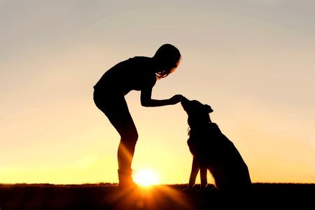 mujer con perro: Una silueta de una chica sentada al aire libre en la hierba con su mascota perro de la mezcla de pastor alemán, dándole de comer golosinas durante el entrenamiento, en frente de un cielo sunsetting.