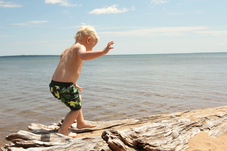 lake beach: A toddler boy child is walking along some drift wood on the beach shore of Lake Superior.