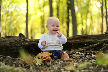 6 month old: A happy baby girl is chewing on a little stick as she smiles and sits on the fallen leaves in a forest full of yellow colored Silver Maple trees in the Autumn.