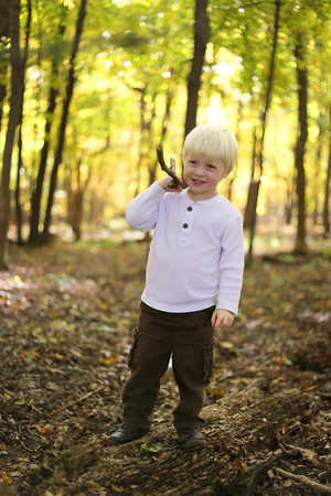 silver maple: A young boy child is standin in woods of a Silver Maple Forest, playing with a stick on a sunny autumn day.
