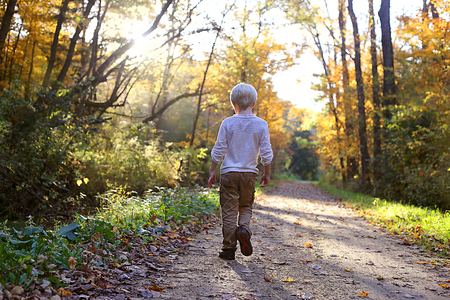 A young child is walking down a sunny bike trail in the woods on an autumn day.