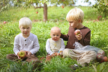 six months: Three young children, two boys and their baby sister are sitting in the grass at an Apple Orchard, eating fruit on an autumn day.