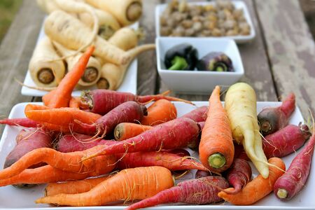 feast: Freshly harvested homegrown variety of colorful organic vegetables, including carrots, peppers, ground cherries, and parsnips, are displayed for a food feast on a wood picnic table.