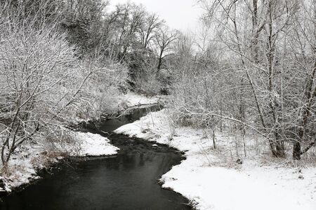 creek: A landscape of a small winding river surrounded by a forest of trees with snow covered branches in the winter.