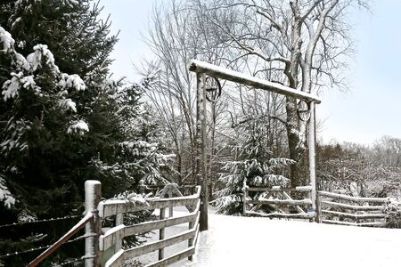 country roads: Rustic Wood Timbers are framing a country driveway by mature Pine Trees on a snowy winter day.
