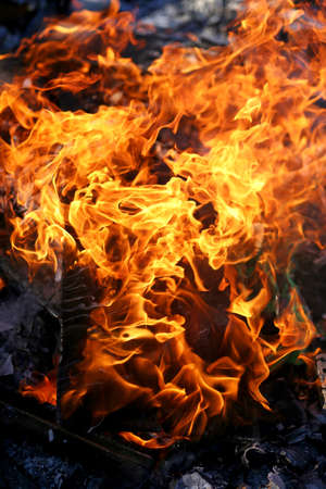 soot: Bright Orange flames are billowing up from wood in a summer campfire outside.