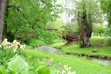 A Willow Tree, forest, hostas, and irises form a garden aroung a wooden walking bridge over a stream in the park. Stock Photo