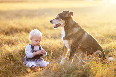 next year: A sweet one year old baby girl is playing outside next to her rescued German Shepherd mix breed dog on a fall evening.