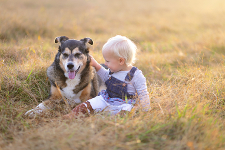 rescued: A happy little one year old baby girl is smiling as she lovingly pets her rescued German Shepherd Mix Breed Dog outside in the Country at sunset on an Autumn evening.